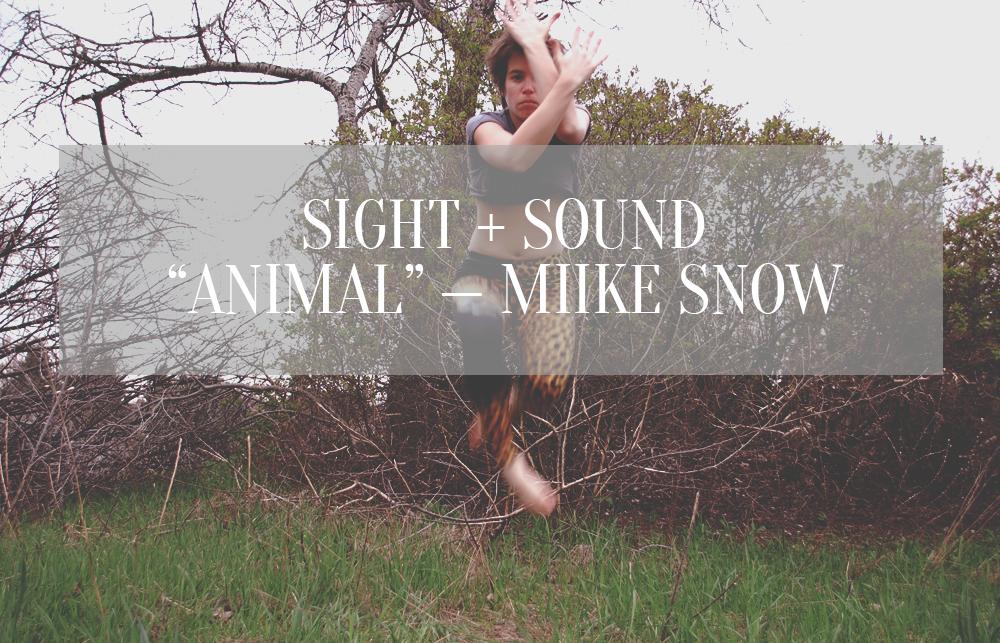Animal Miike Snow