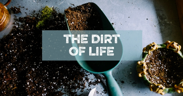 dirt of life blog mo stych