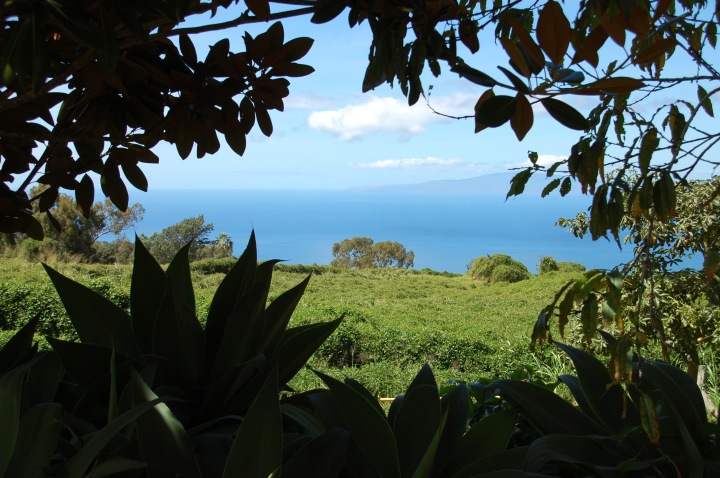 Maui Upcountry, overlook stop on the south road to Hana: Sun Yat-Sen Park