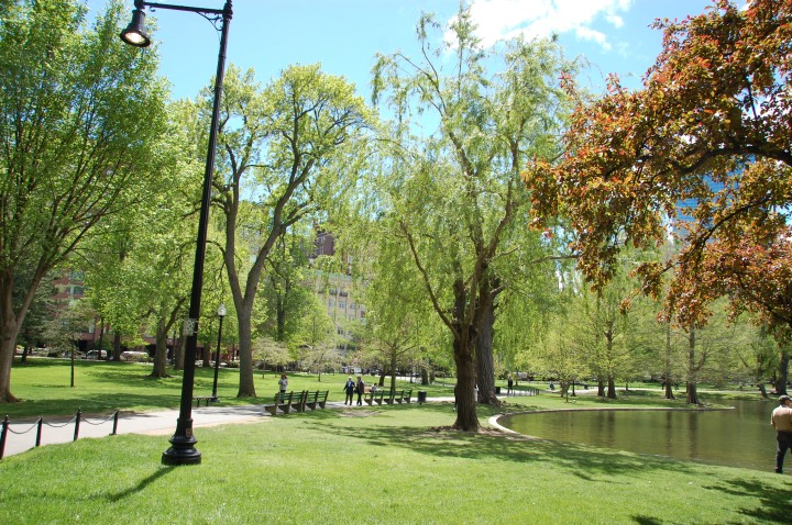 Things to do in Boston - Boston Public Garden Pond