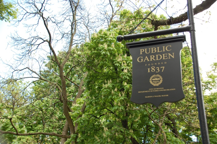 Things to do in Boston - Boston Public Garden