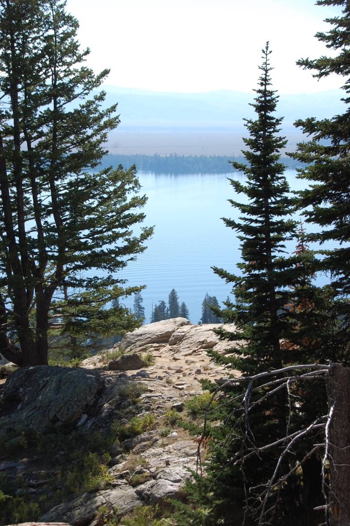 Jenny Lake Hiking in Grand Teton National Park - Inspiration Point Through Trees