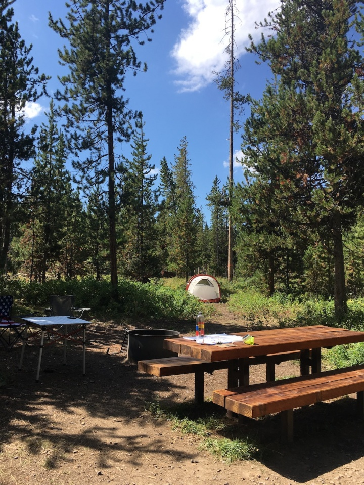 Our Campsite at Turpin Meadow in Bridger-Teton National Forest near Grand Teton National Park