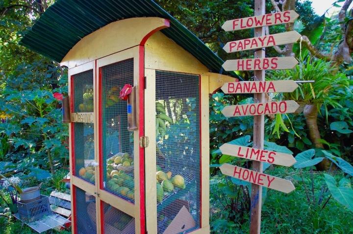 South Road to Hana - Fun Fruit Stand near Haleakala