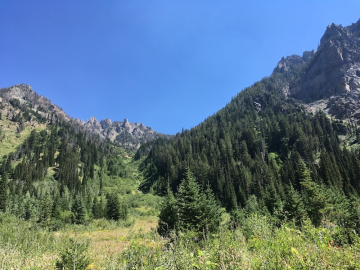Death Canyon Hike Grand Teton - view from the meadow