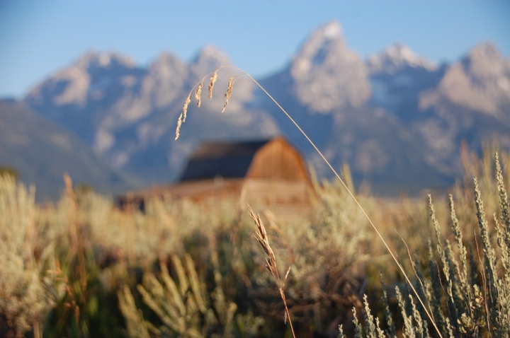 Grand Teton Antelope Flats Sunrise - 2
