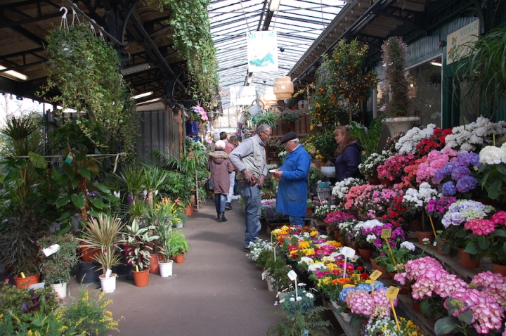 Paris - flower market